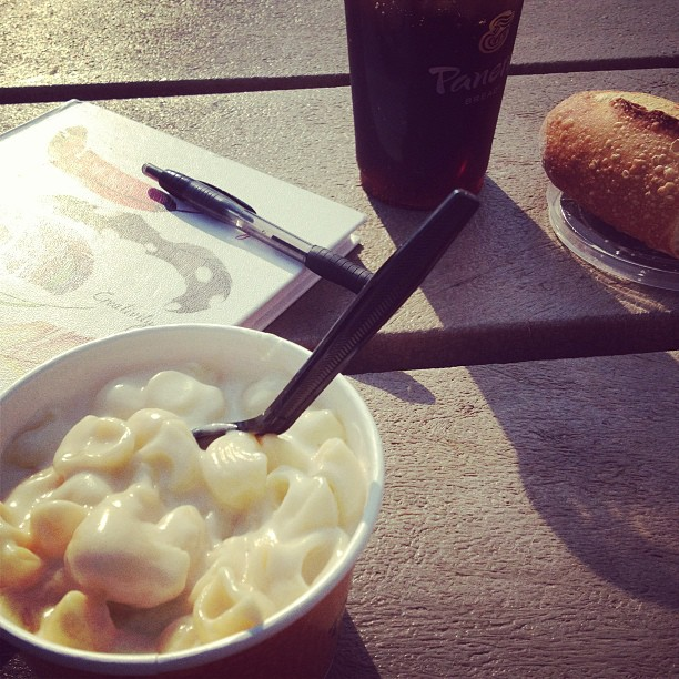 Dinner_at_a_park